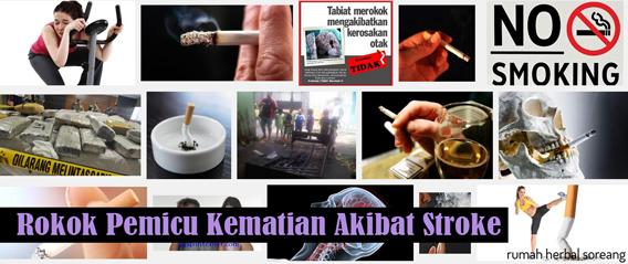 Rokok Pemicu Kematian Akibat Stroke